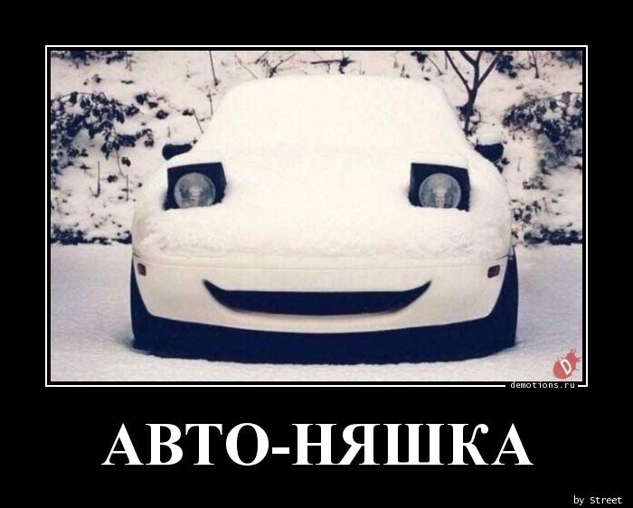 АВТО-НЯШКА