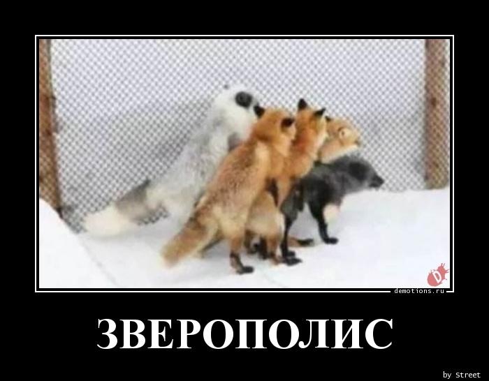 ЗВЕРОПОЛИС
