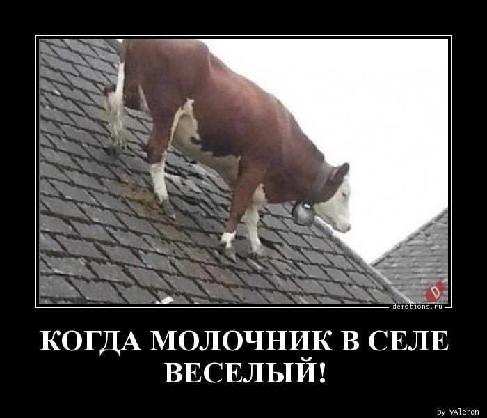 КОГДА МОЛОЧНИК В СЕЛЕ ВЕСЕЛЫЙ!