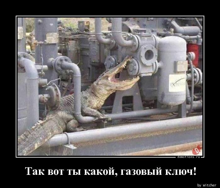 Так вот ты какой, газовый ключ!