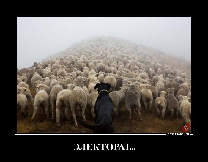 ЭЛЕКТОРАТ...