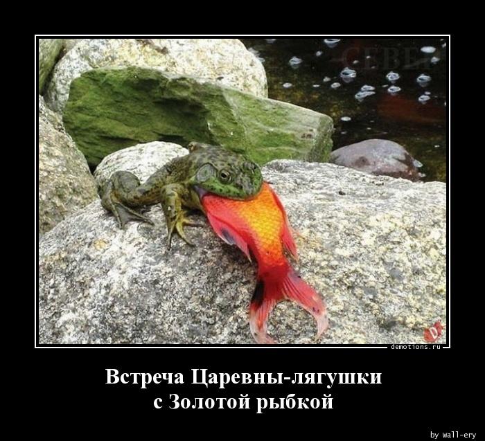 Встреча Царевны-лягушки с Золотой рыбкой