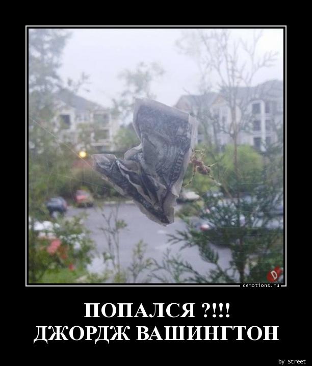 ПОПАЛСЯ ?!!! ДЖОРДЖ ВАШИНГТОН