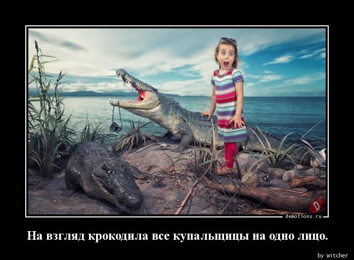 На взгляд крокодила все купальщицы на одно лицо.
