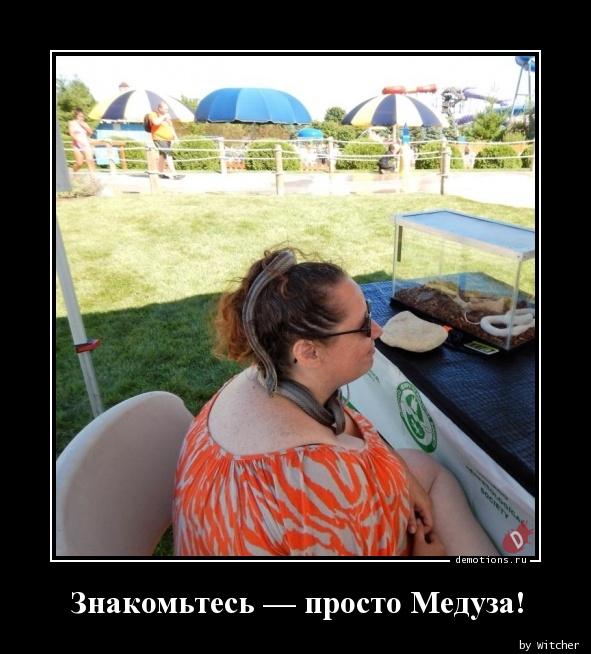 Знакомьтесь — просто Медуза!