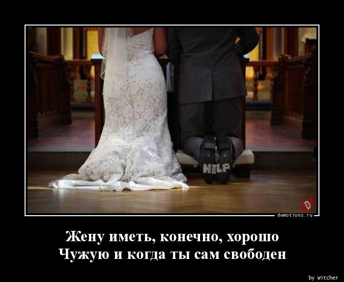 Жену иметь, конечно, хорошо  Чужую и когда ты сам свободен