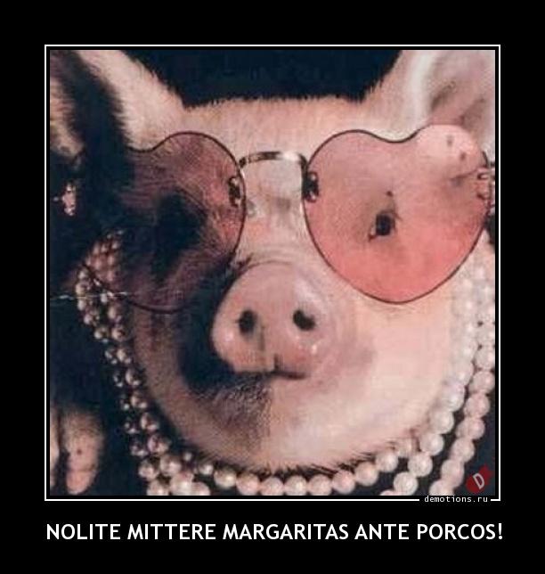 NOLITE MITTERE MARGARITAS ANTE PORCOS!