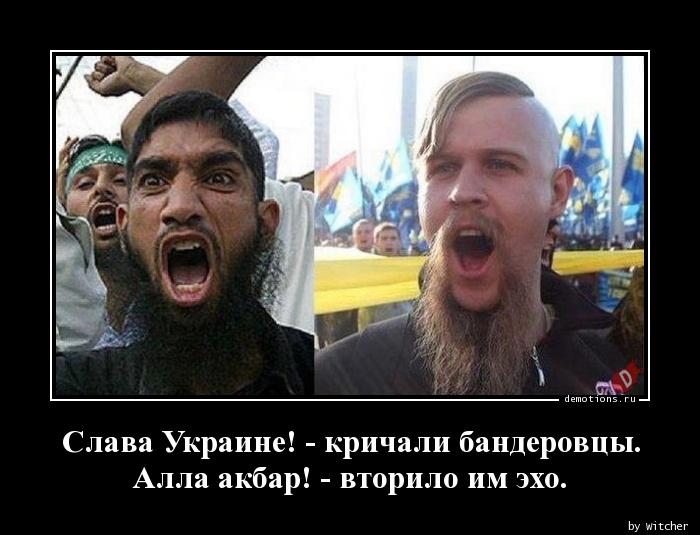 Слава Украине! - кричали бандеровцы. Алла акбар! - вторило им эхо.