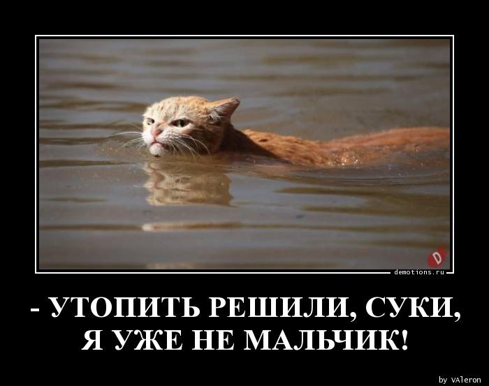 - УТОПИТЬ РЕШИЛИ, СУКИ,Я УЖЕ НЕ МАЛЬЧИК!