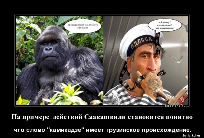 На примере  действий Саакашвили становится понятно
