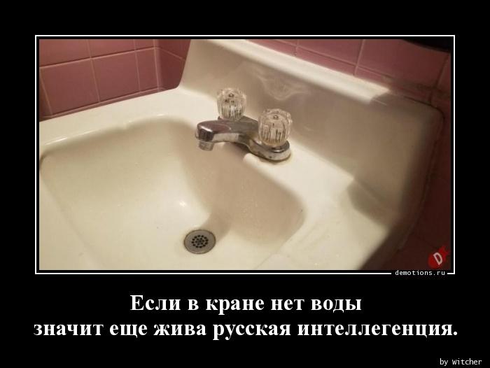 Если в кране нет воды  значит еще жива русская интеллегенция.