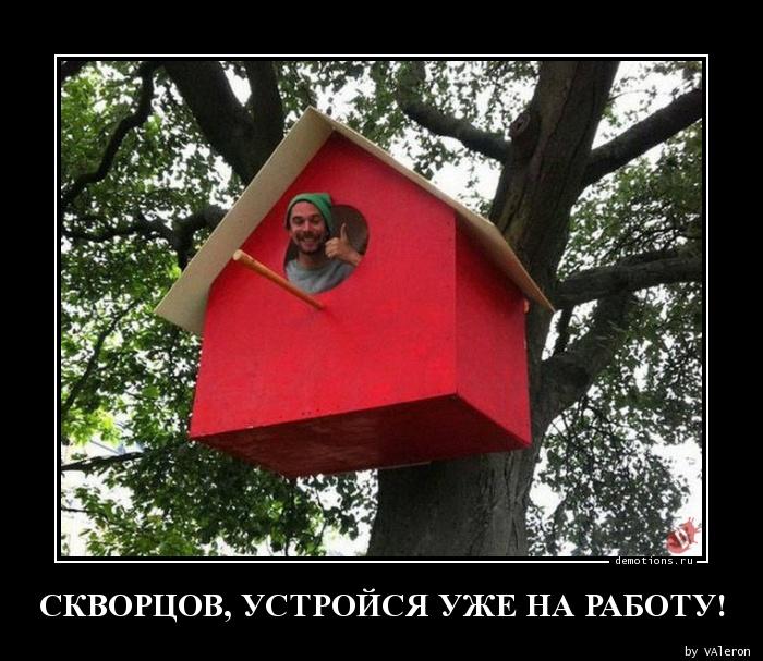 СКВОРЦОВ, УСТРОЙСЯ УЖЕ НА РАБОТУ!
