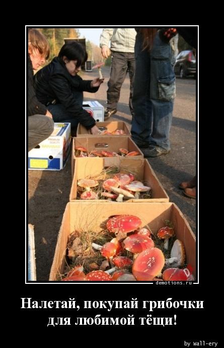 Налетай, покупай грибочки для любимой тёщи!