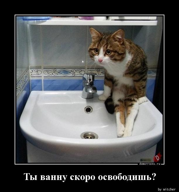 Ты ванну скоро освободишь?