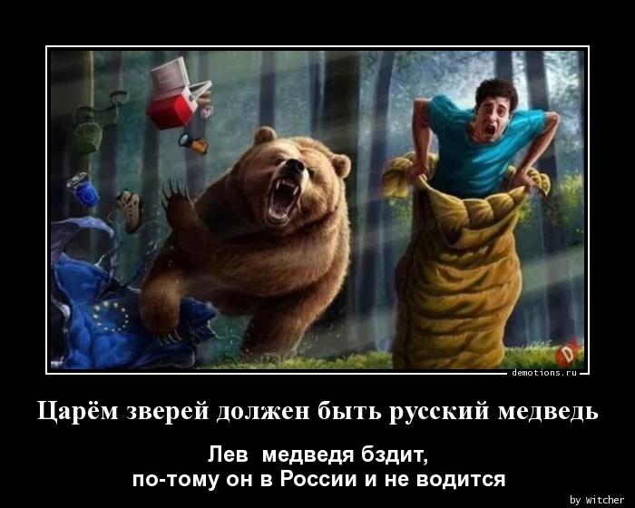 Царём зверей должен быть русский медведь