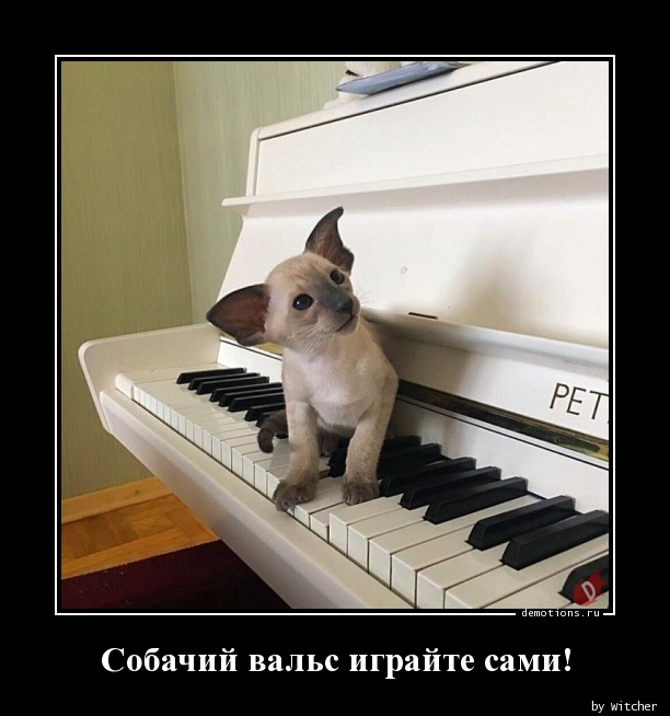 Собачий вальс играйте сами!