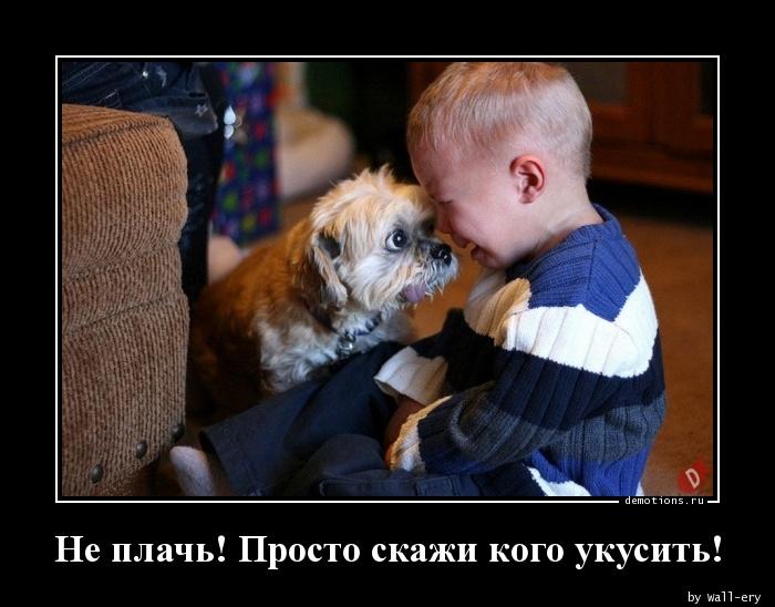 Не плачь! Просто скажи кого укусить!