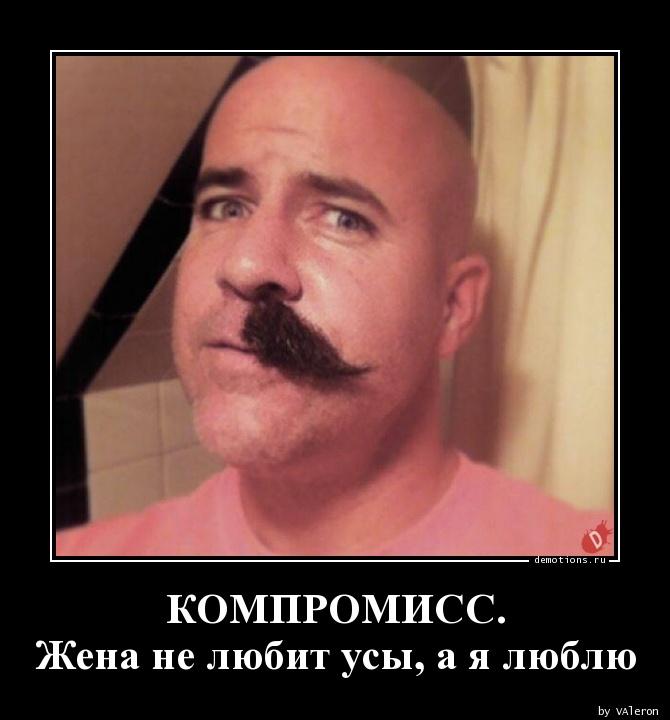 КОМПРОМИСС. Жена не любит усы, а я люблю