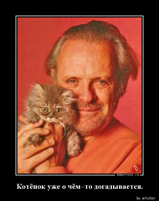 Котёнок уже о чём–то догадывается.