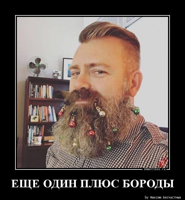 ЕЩЕ ОДИН ПЛЮС БОРОДЫ