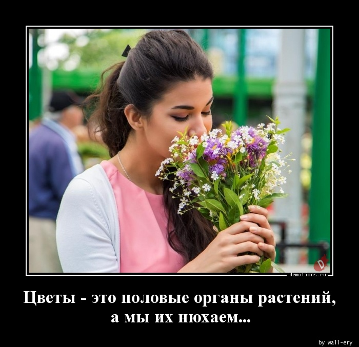 Цветы - это половые органы растений, а мы их нюхаем...