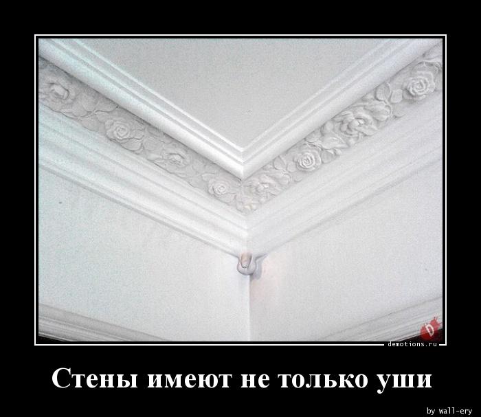 Стены имеют не только уши