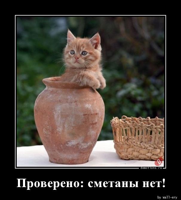 Проверено: сметаны нет!