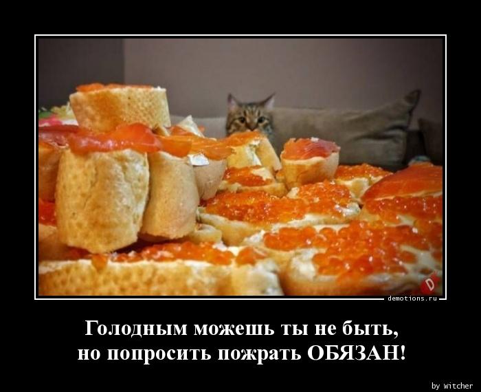 Голодным можешь ты не быть, но попросить пожрать ОБЯЗАН!