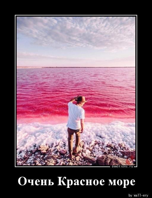 Очень Красное море