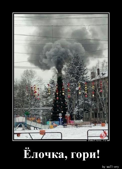 Ёлочка, гори!