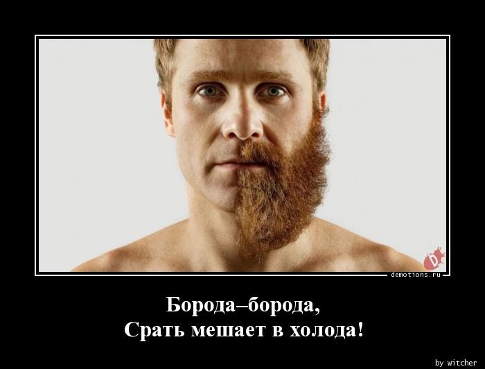 Борода–борода, Срать мешает в холода!