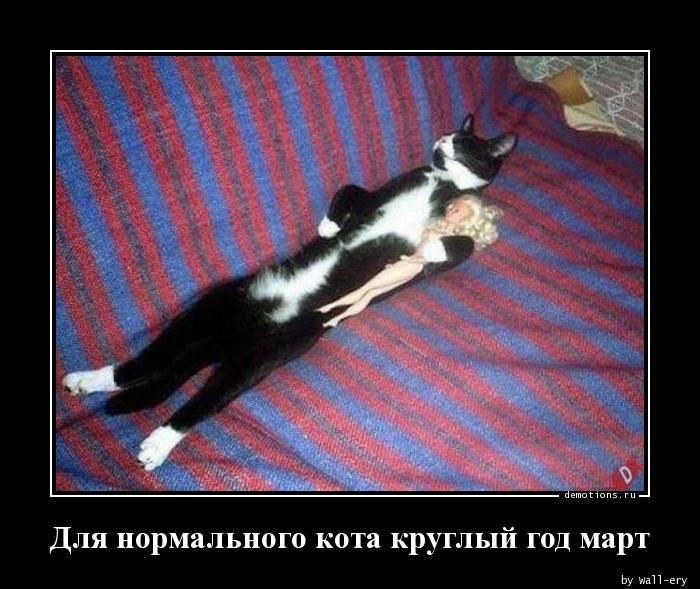 Для нормального кота круглый год март