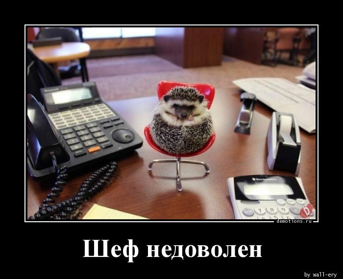 Шеф недоволен