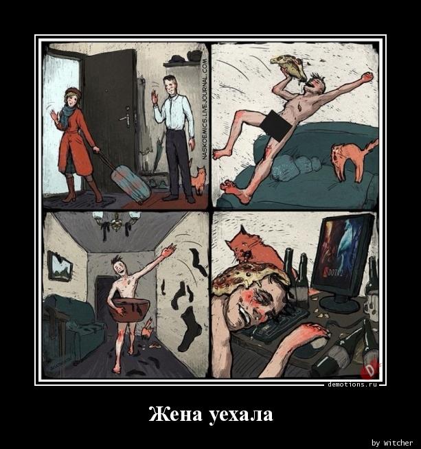 Жена уехала