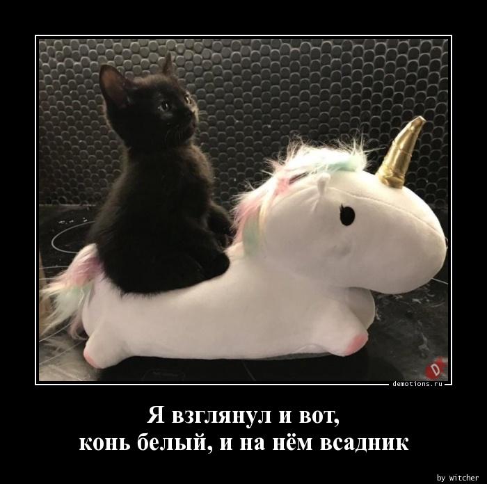 Я взглянул и вот,  конь белый, и на нём всадник