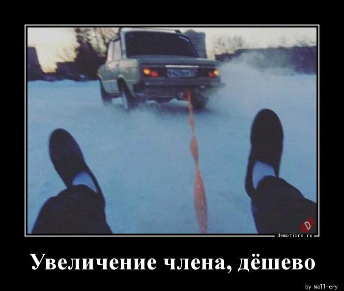 demotivatori-pro-chlen-smotret-russkoe-porno-russkie-gornichnie