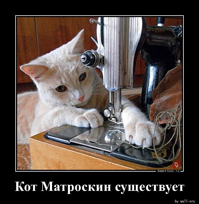 Кот Матроскин существует