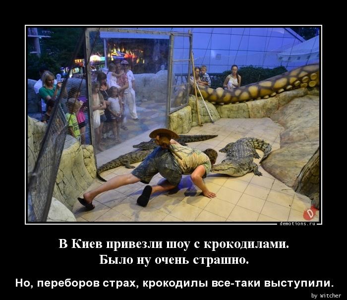 В Киев привезли шоу с крокодилами. Было ну очень страшно.