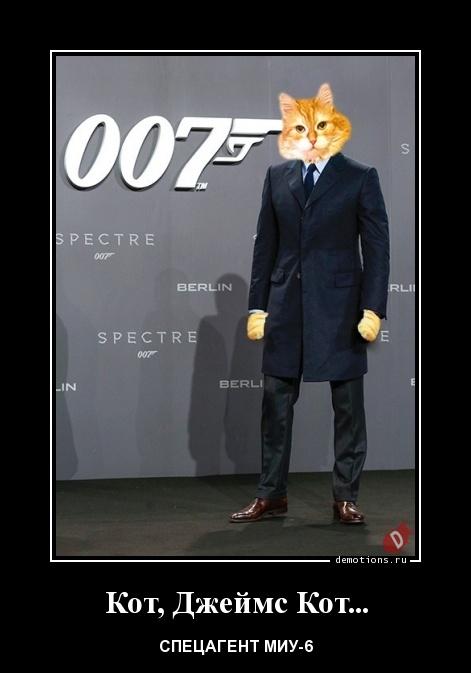 Кот, Джеймс Кот...