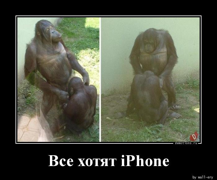 Все хотят iPhone