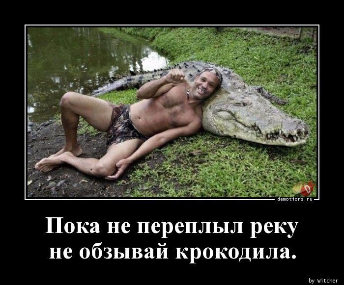 Пока не переплыл реку  не обзывай крокодила.
