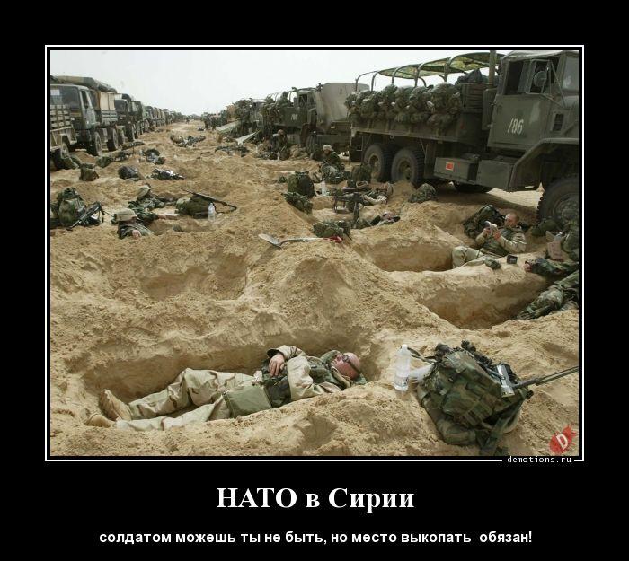НАТО в Сирии