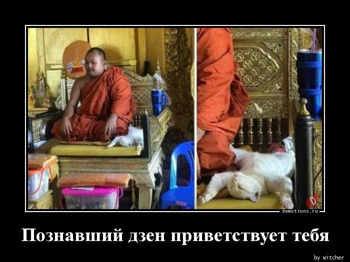 Познавший дзен приветствует тебя