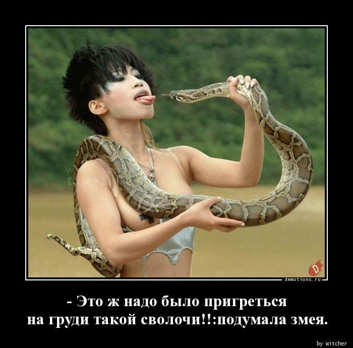 - Это ж надо было пригреться на груди такой сволочи!!:подумала змея.