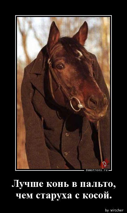 Лучше конь в пальто,  чем старуха с косой.