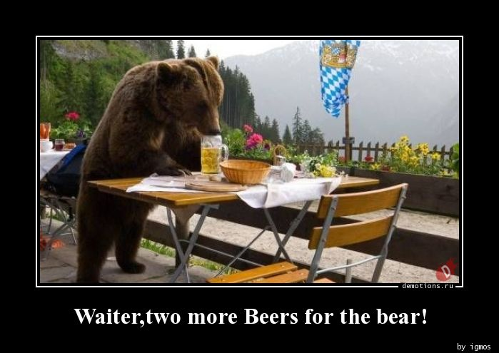 Waiter,two more Beers for the bear!