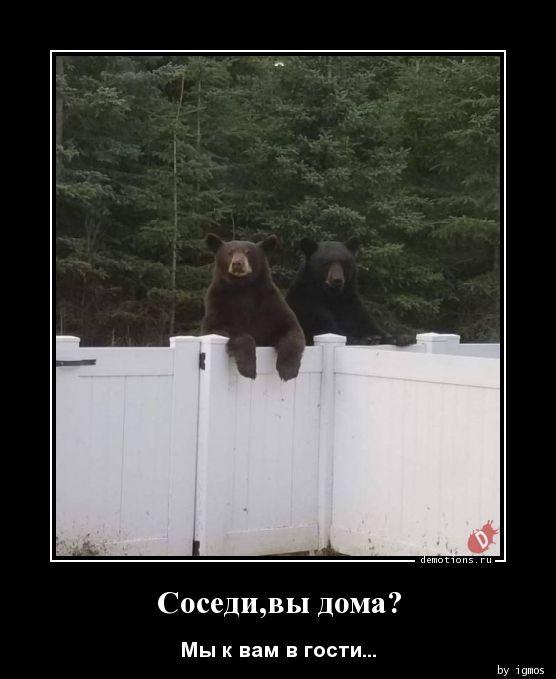 Соседи,вы дома?