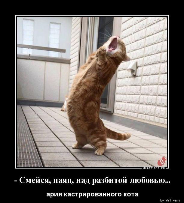 - Смейся, паяц, над разбитой любовью...