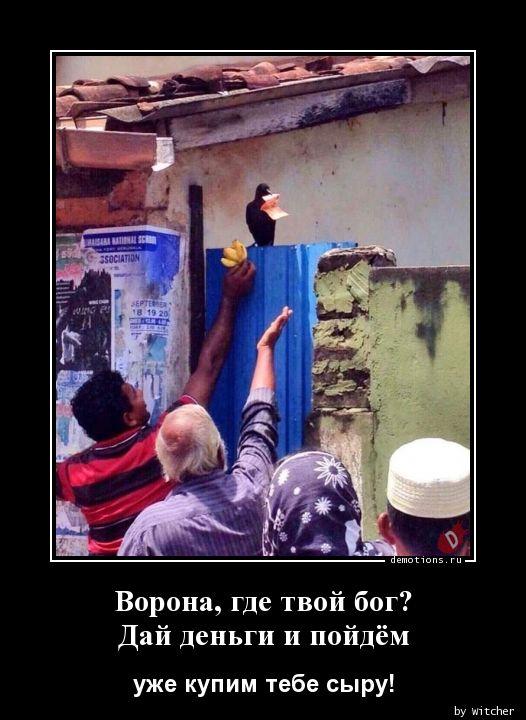Ворона, где твой бог? Дай деньги и пойдём