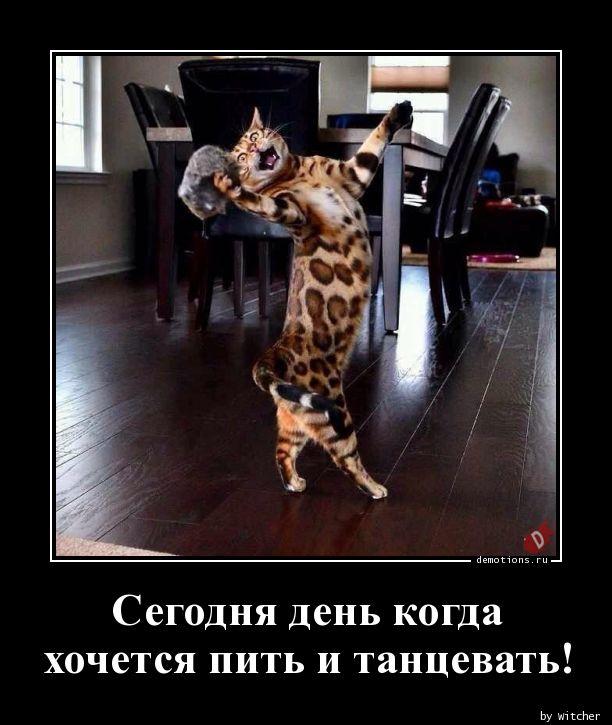 Сегодня день когда  хочется пить и танцевать!